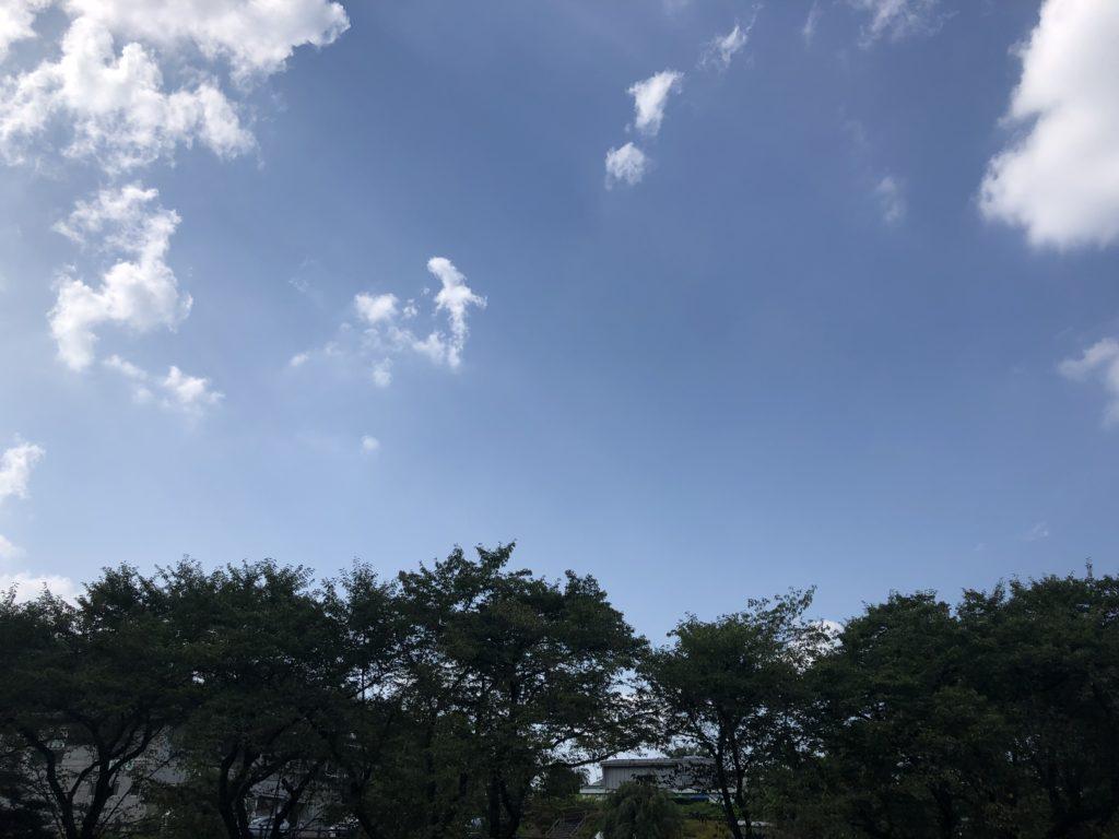 アヒル池周辺の空画像